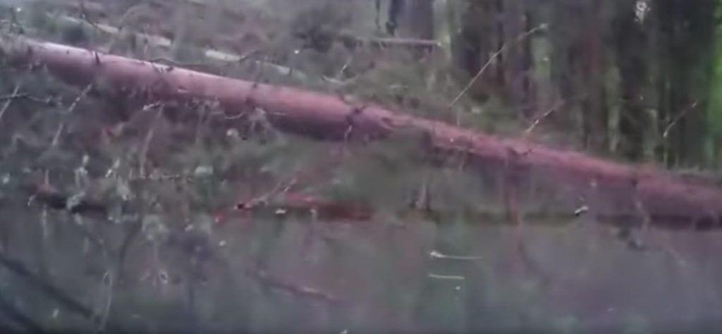 naturaleza-desastre1