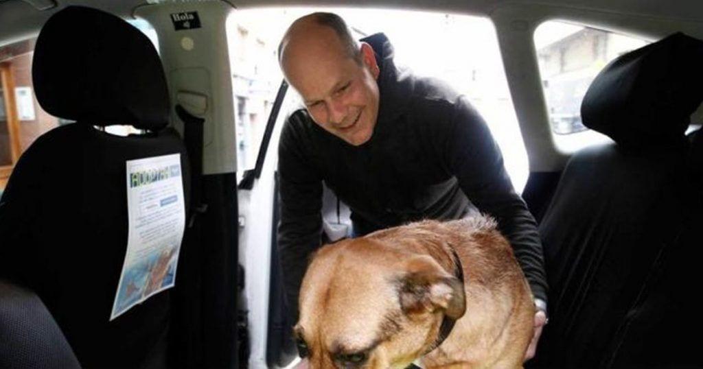 Un taxista ayuda a adoptar animales