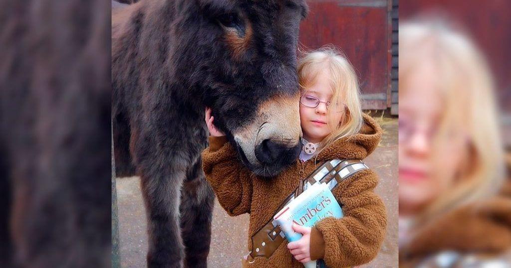 burro amistad