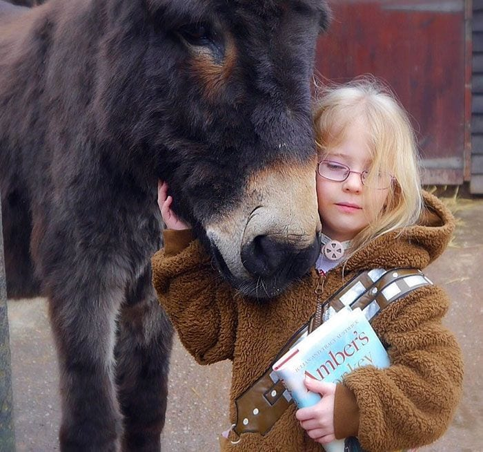 burro-amistad7