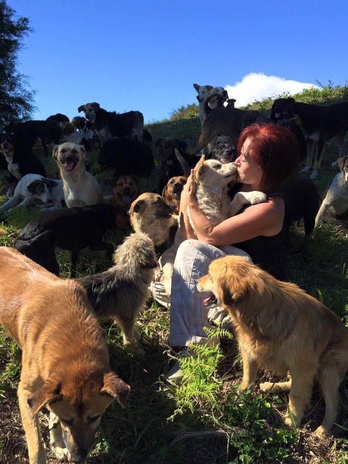 mujer-rescata-mil-perros3