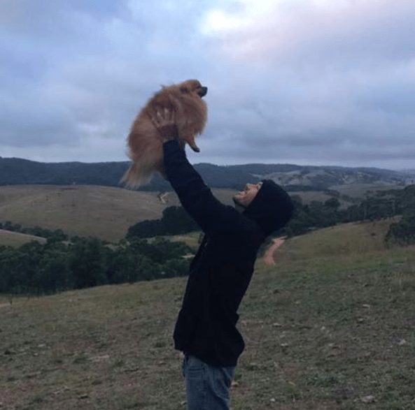 rescatador-perros2