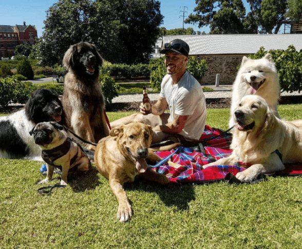 rescatador-perros4