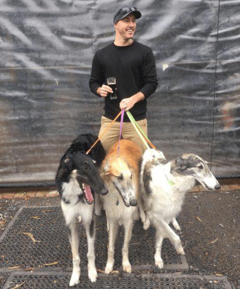 rescatador-perros6