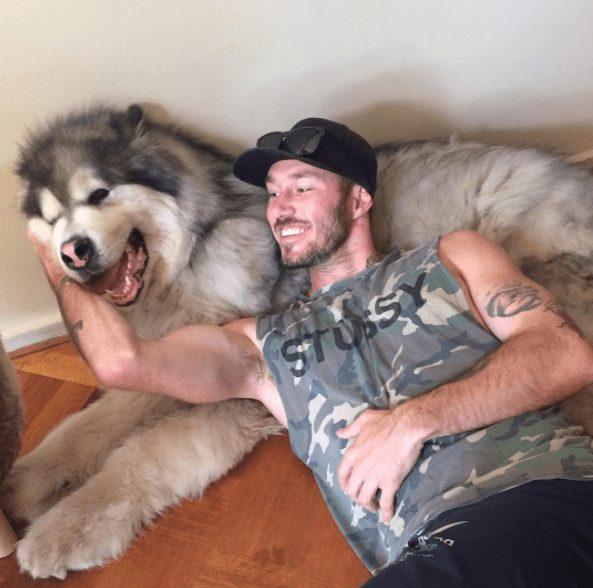 rescatador-perros9