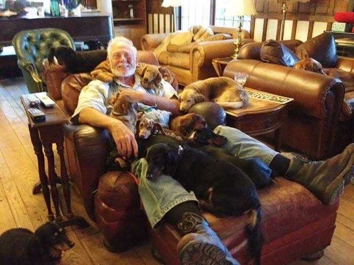vivir-con-muchos-perros3