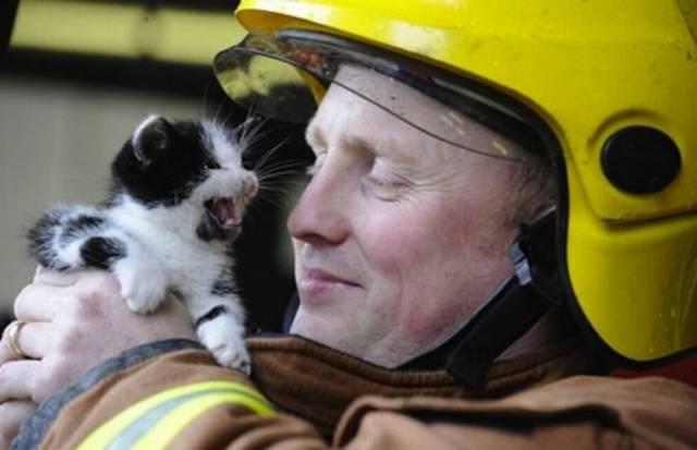 bomberos-rescates10
