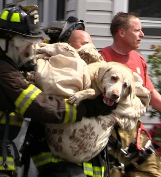 bomberos-rescates2