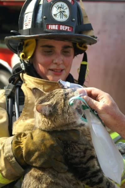 bomberos-rescates3