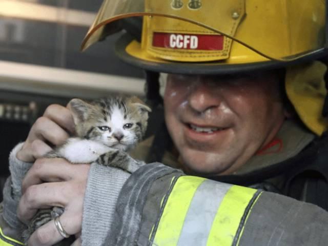 bomberos-rescates4