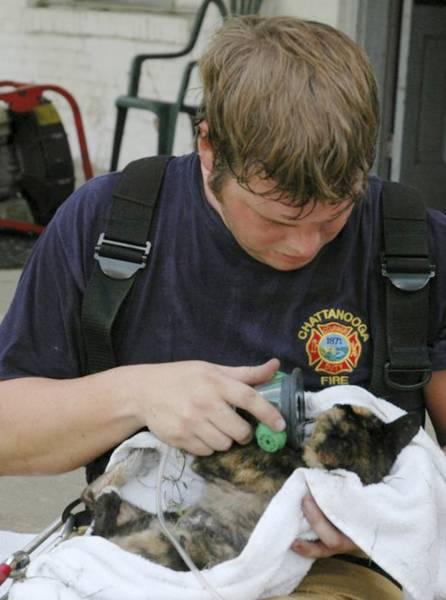 bomberos-rescates5
