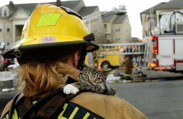 bomberos-rescates6
