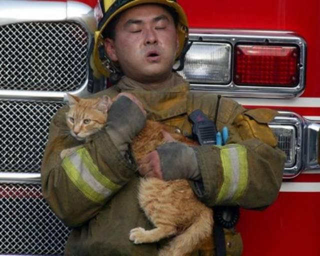 bomberos-rescates7