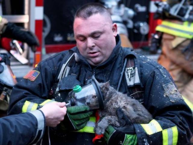bomberos-rescates9