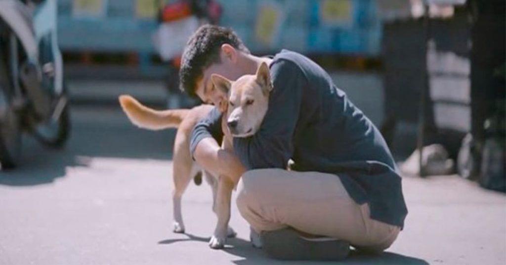 joven abraza perros