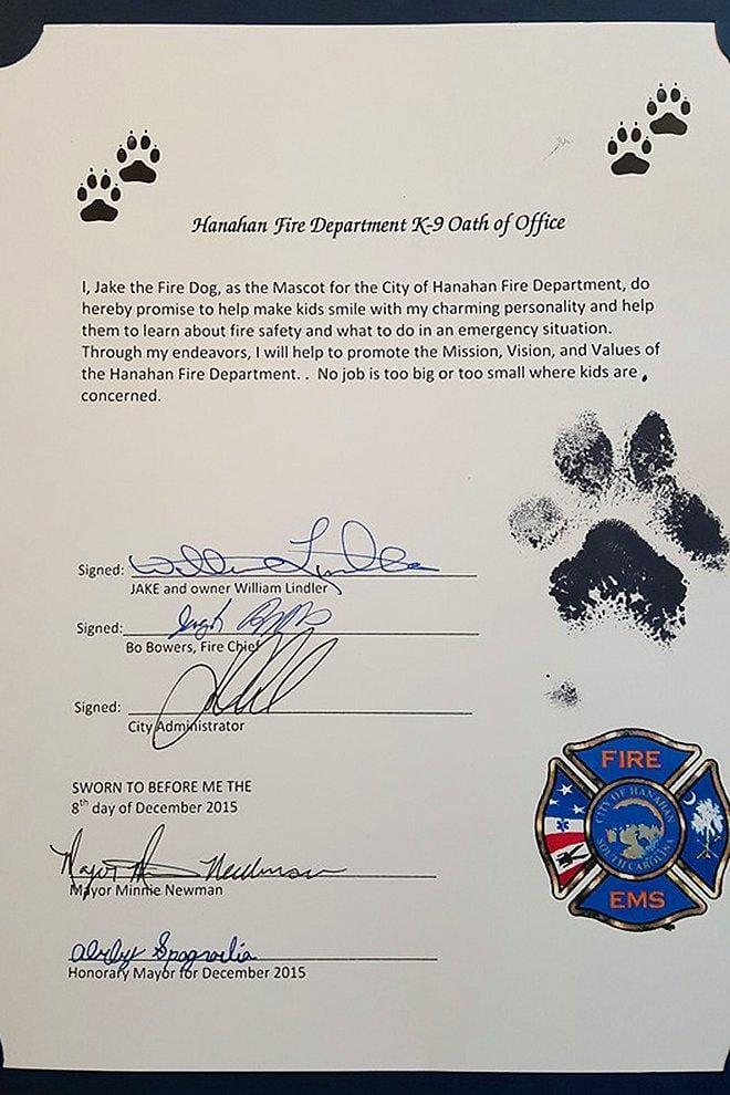 perro-bombero5