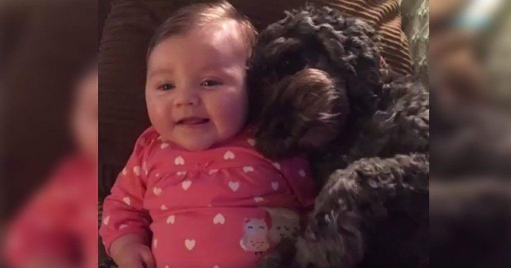 Lo que hizo este perro por esta niña es la mayor demostración de amor incondicional
