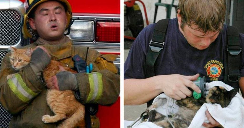 rescates bomberos destacada