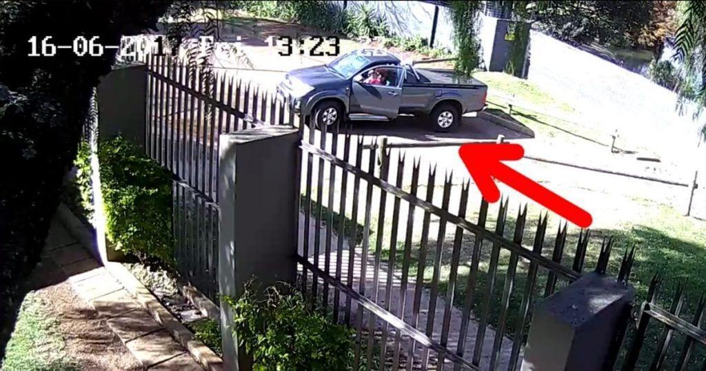 Una cámara de seguridad capta el abandono de un perro