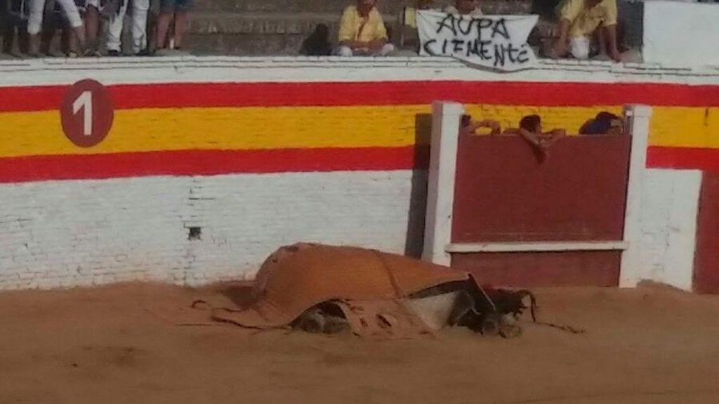 caballo toros 01