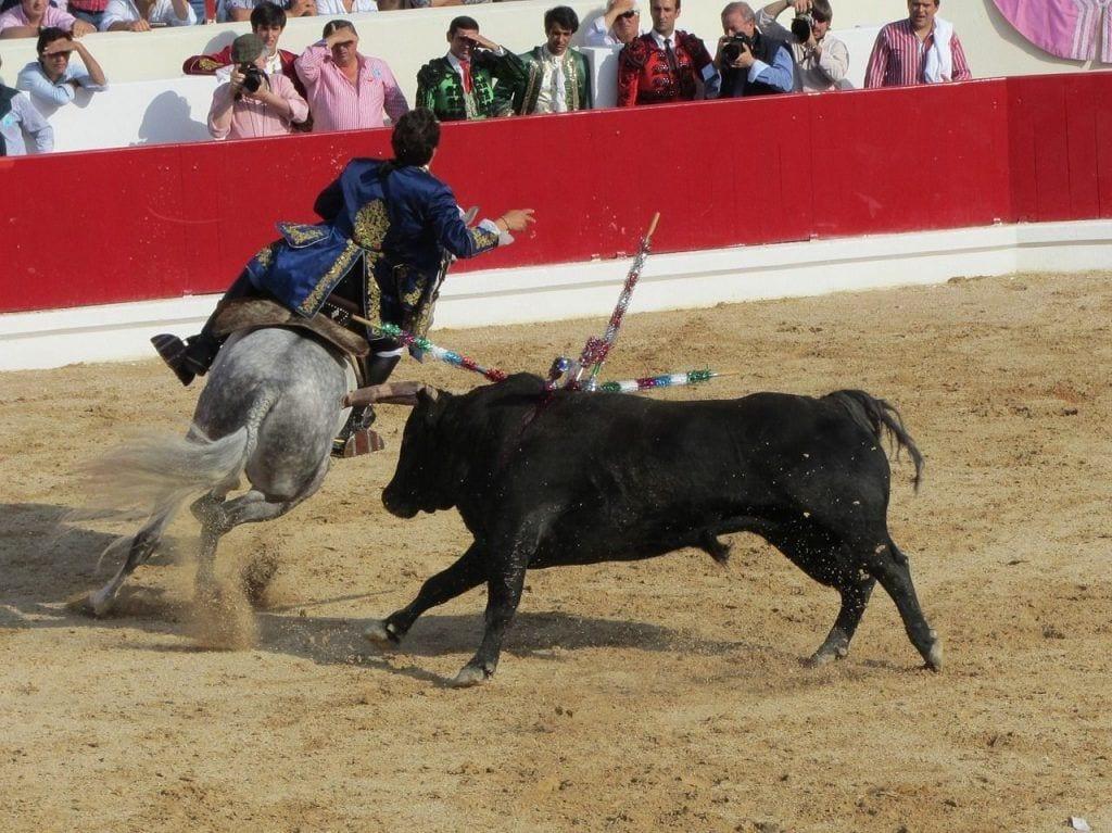 frases-toreros-05