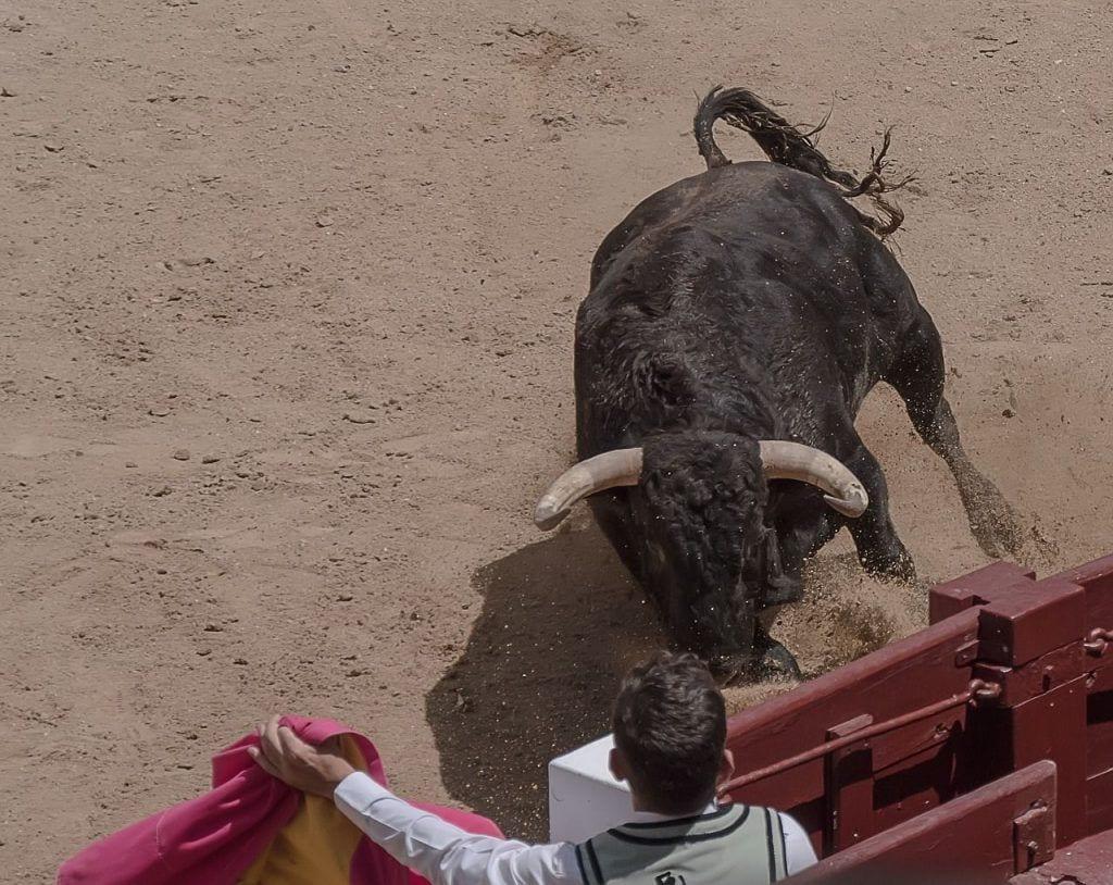 frases-toreros-07