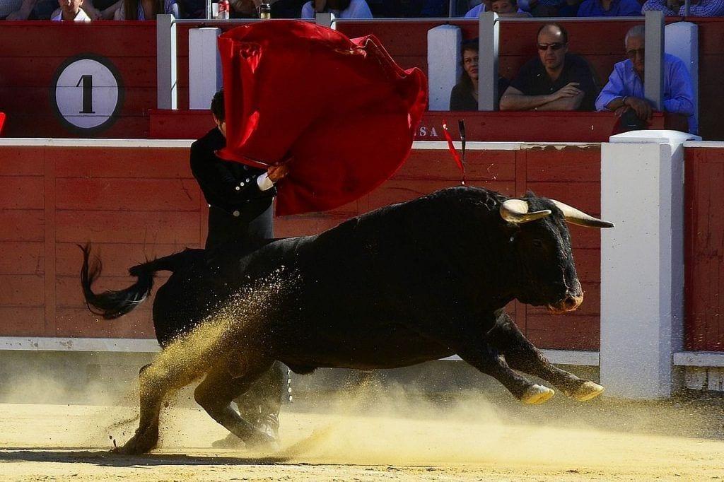 frases-toreros-09