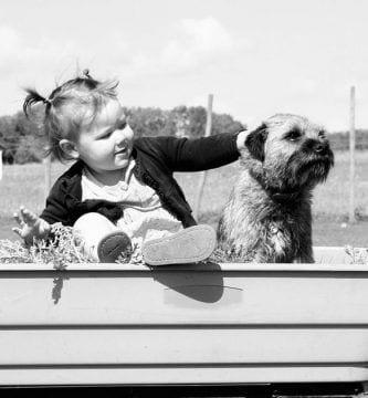 beneficio salud mascotas
