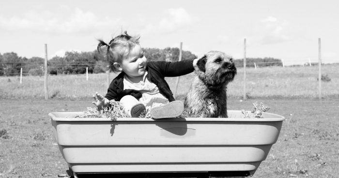 beneficio-salud-mascotas