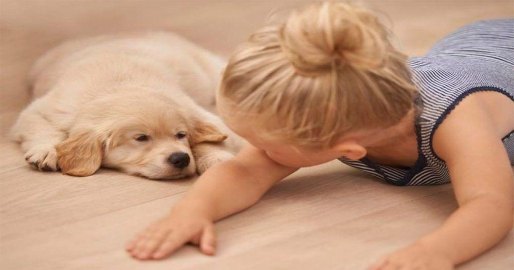 Conoce los 10 beneficios para la salud que nos proporcionan nuestras mascotas