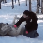mujer amiga lobos