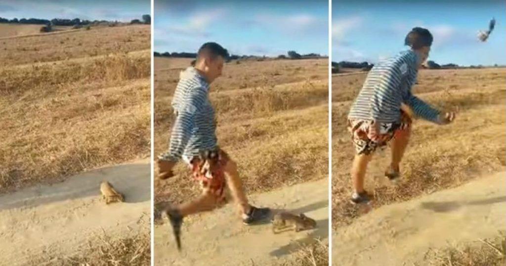 Un chico le da una patada a un conejo