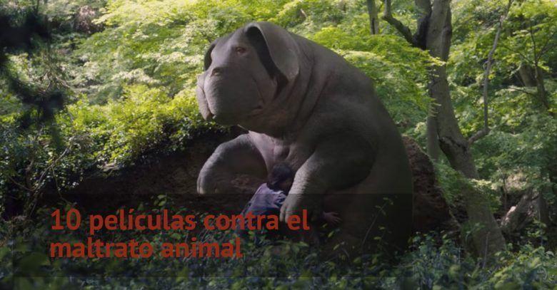 peliculas-maltrato-animal