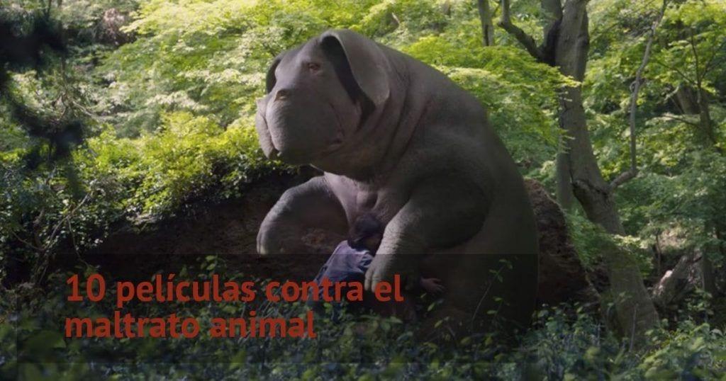 10 películas contra el maltrato animal