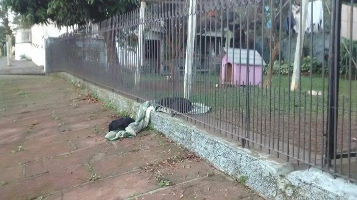 perra-generosa-manta-03