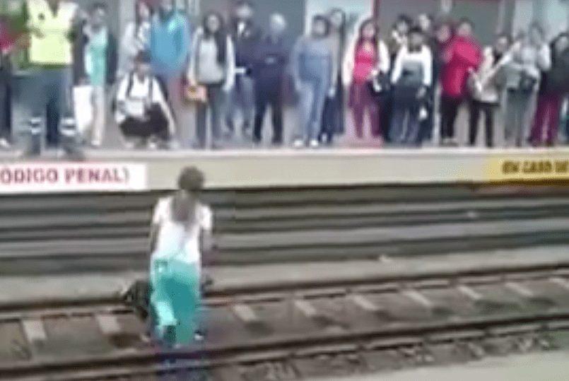 perro-via-metro-01