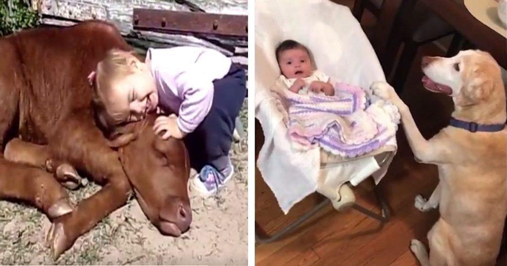 Amistad entre niños y animales