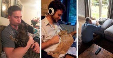 gatos gente