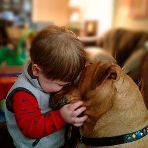 Por qué los niños deben tener mascota