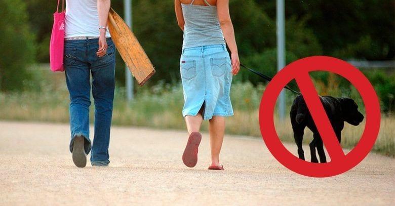 pasear-perros-peligrosos-dest
