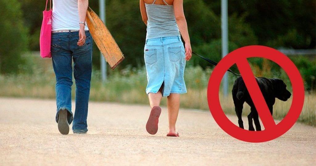 pasear perros peligrosos dest