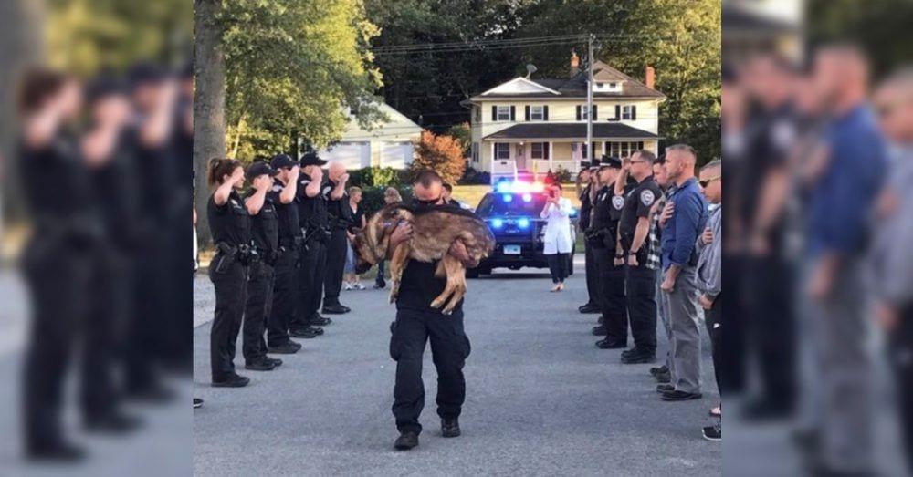 perro policia despedida destacada 1