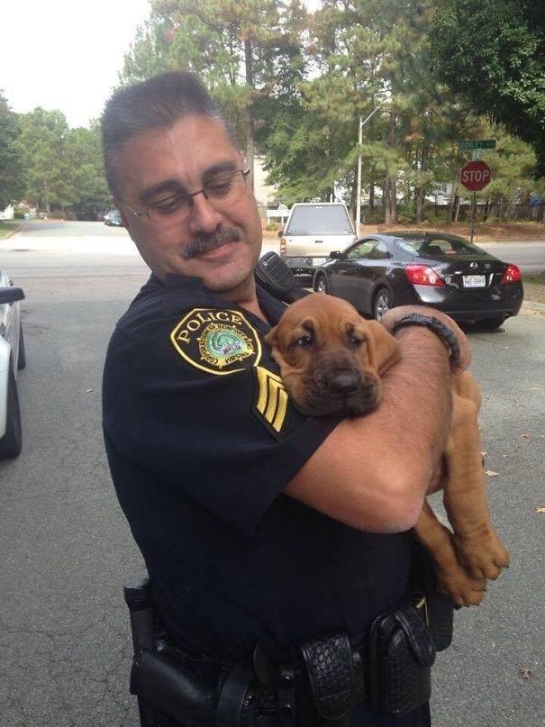 cachorro perro cogido brazos policia