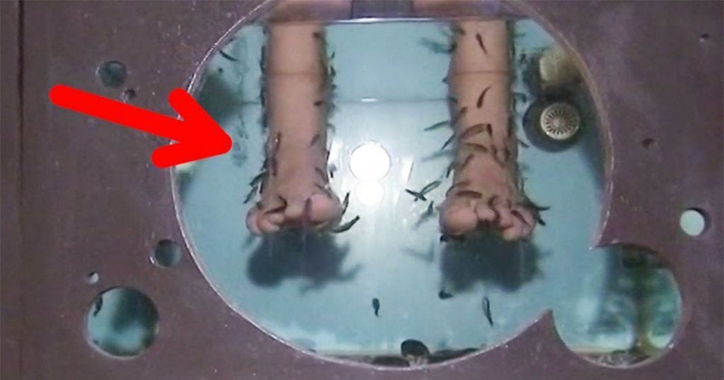 pies-peces-ictoterapia-deberia-dejar-existir-00