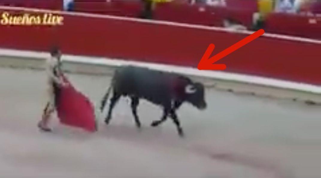 toro-huyendo-de-torero