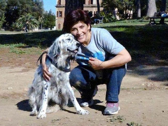 cuidar a su perro