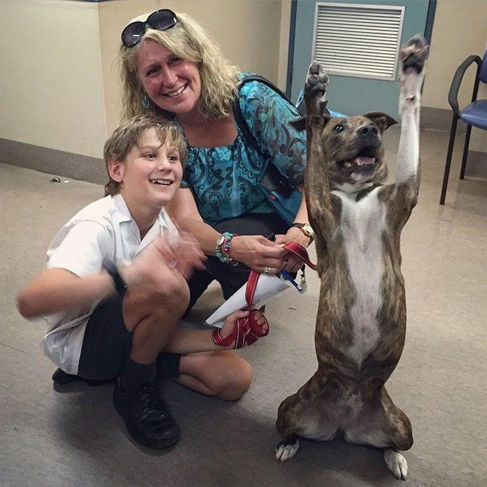 humanos-conociendo-perros-04
