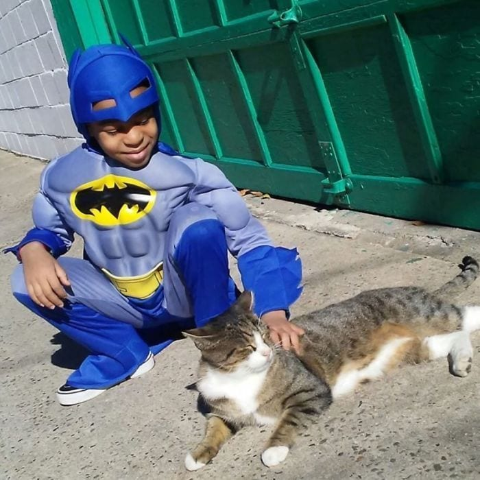 ninio-superheroe-gatos3