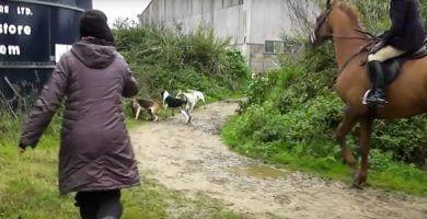 caza zorro muejeres