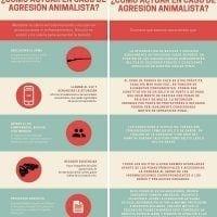 agresion animalista